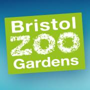 bristolzoo.org.uk